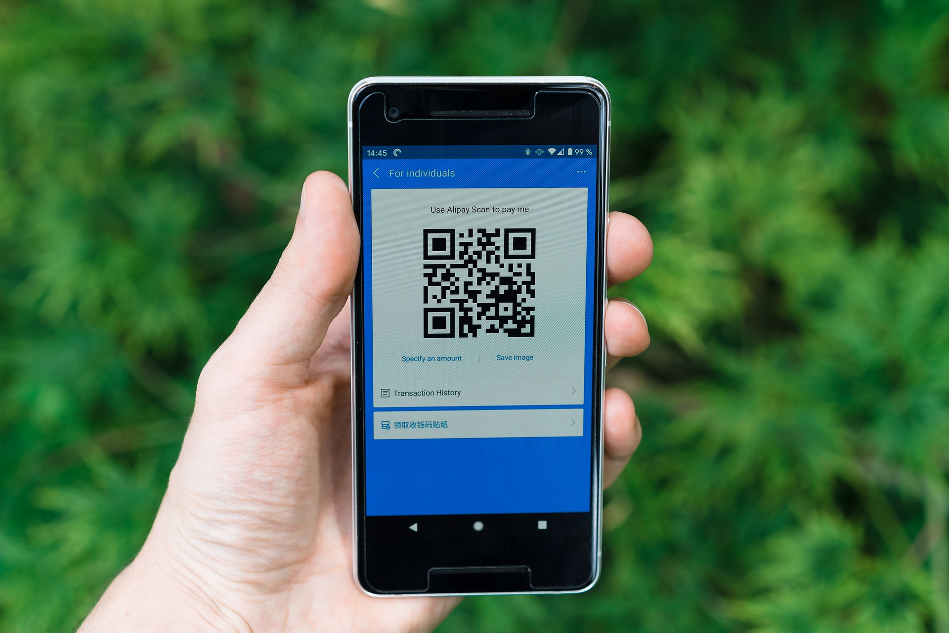 alipay on a smartphone